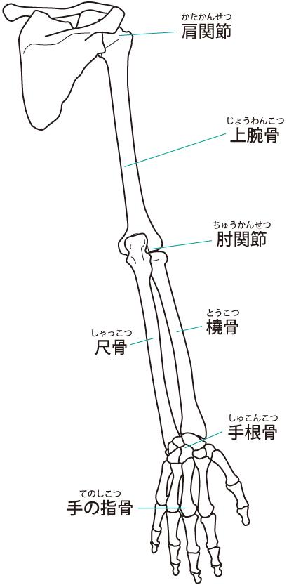 ばね指の原因は体の歪みです。