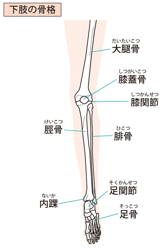 足底筋膜炎の原因は体の歪みです。