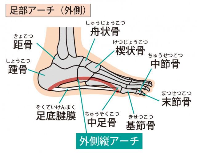 外反母趾の原因は体の歪みです。