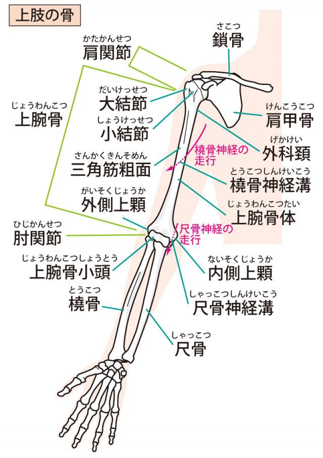 当院の「手首の痛み」に対してのアプローチ